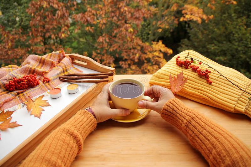 Hot tea, coffee in female hands with yellow and orange leaves, the concept of autumn mood, cozy knitwear, cinnamon sticks and. Candles on a tray, trees in the stock photo