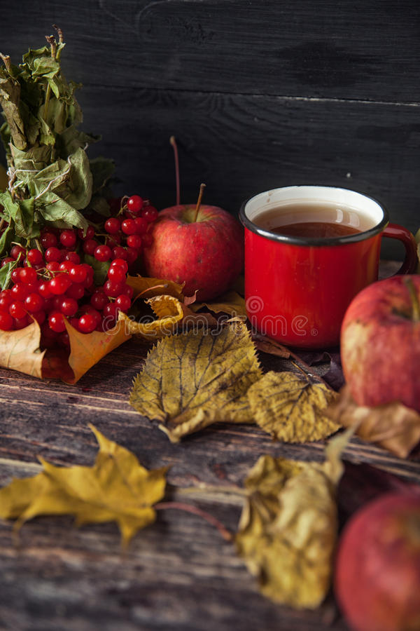 Hot tea cup on an autumn day. Table background with leaves and a royalty free stock images
