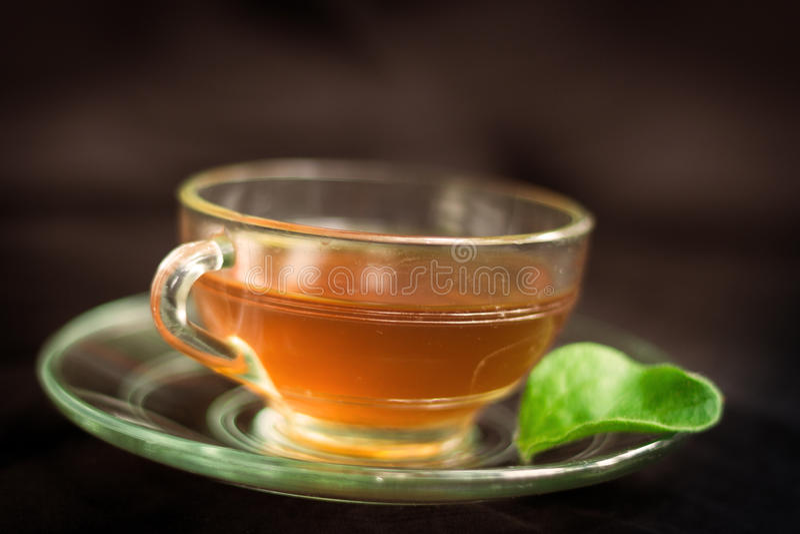 Hot Tea stock image