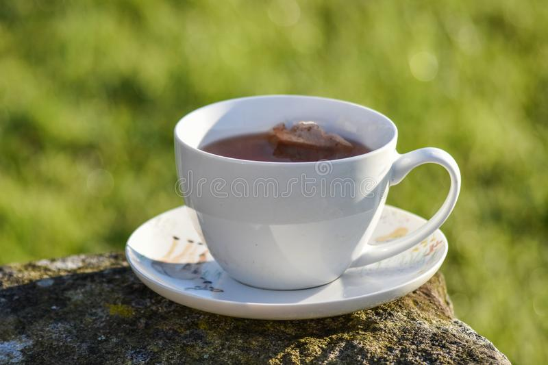 Cup of tea in morning stock images
