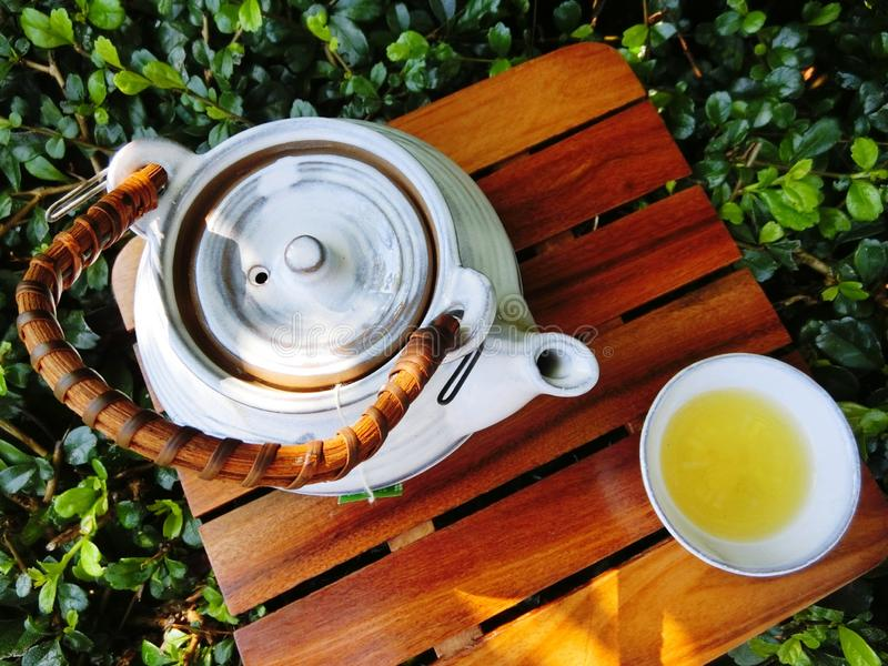 Hot tea. Drinking hot tea in the afternoon royalty free stock images