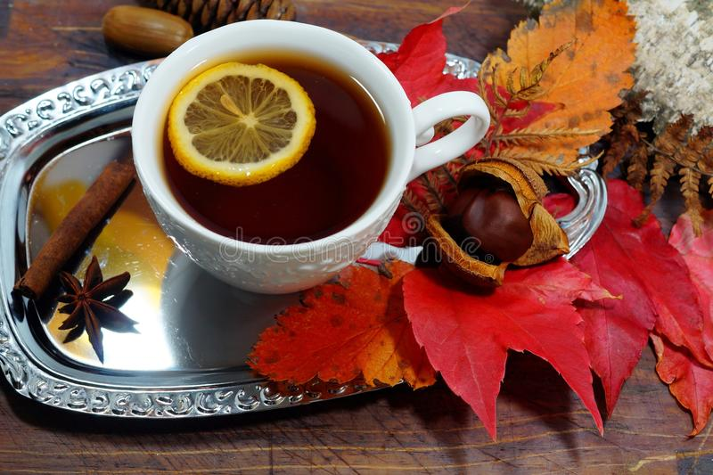 Hot tea with lemon in autumn and winter evenings - an alternative to antibiotics - selective focus. Hot tea with lemon in autumn and winter evenings - an royalty free stock image