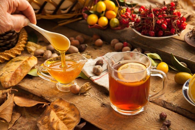 Hot tea with lemon and honey. royalty free stock photo