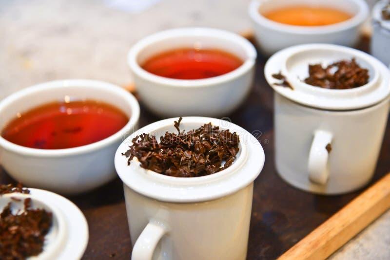 Hot Tea. Tasting of Variety of Green and Black Tea royalty free stock image