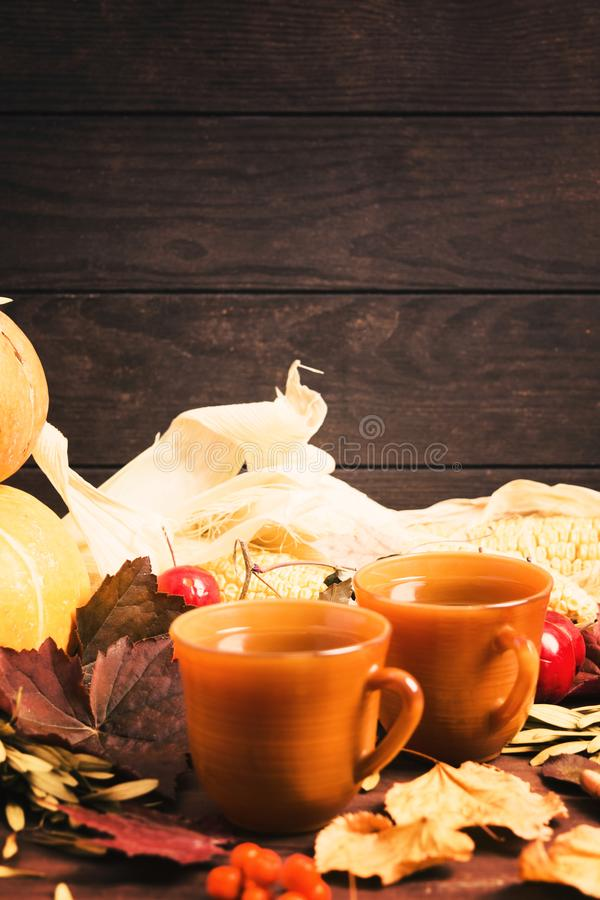 Hot tea in two brown cups with autumn leaves with copy space stock photography