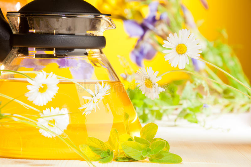 Hot teapot with chamomile flowers royalty free stock image