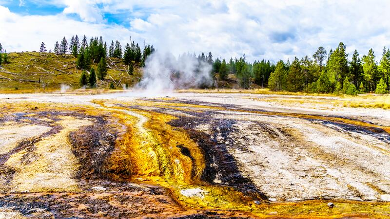 Hot water from the Middle Chain Lake Geyser and surrounding Hot Springs flowing into the Firehole River in Yellowstone. Hot water from the Middle Chain Lake royalty free stock image