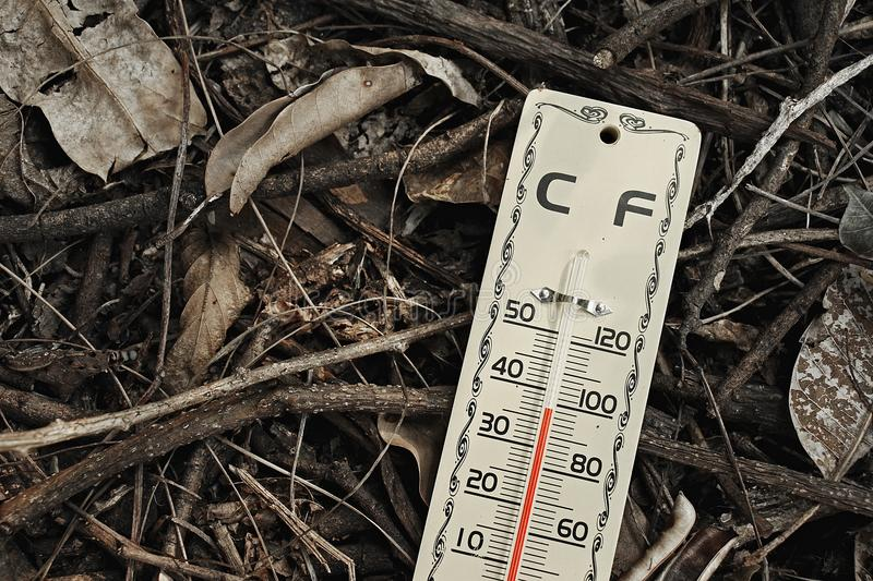 Hot weather, climate change. Hot weather, Thermometer shows high temperature scale on dry leaves ground royalty free stock photography