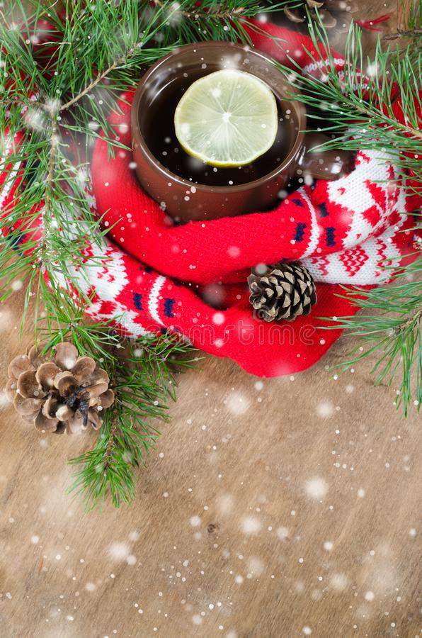 Hot winter tea and Christmas red scarf. royalty free stock image