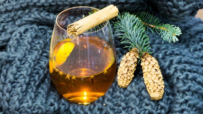 Hot winter tea royalty free stock photos