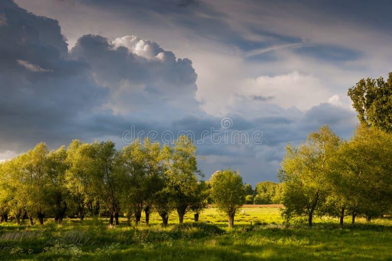 Hota himmel över östliga Flanders royaltyfria bilder