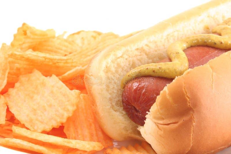 Hotdog royalty-vrije stock fotografie