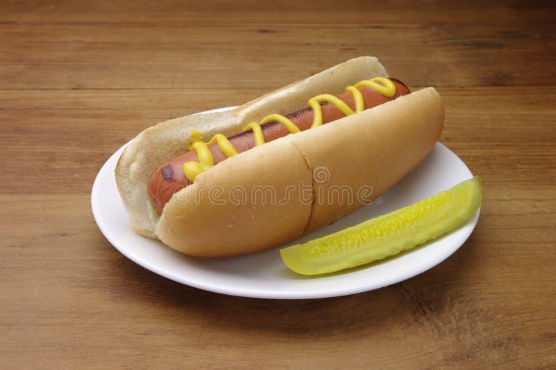 Hotdog auf einer weißen Platte. Gedient mit Essiggurkescheibe stockbild