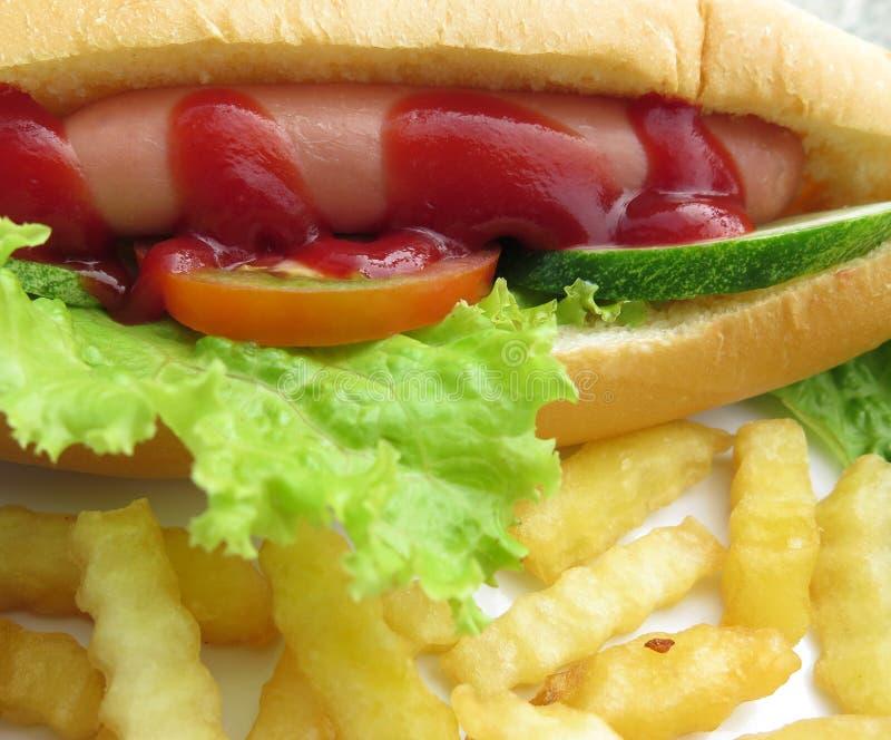 Download Hotdog stock image. Image of hotdog, lettuce, cucumber - 36710823