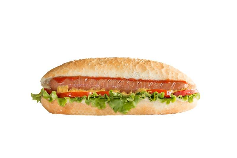 Hotdog-Sandwich auf weißem Hintergrund stockfoto