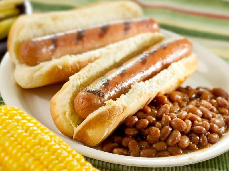 Hotdogs bij cookout stock afbeelding
