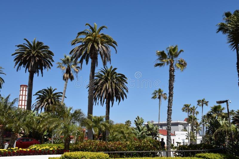 Hotel Del Coronado fotografia de stock royalty free