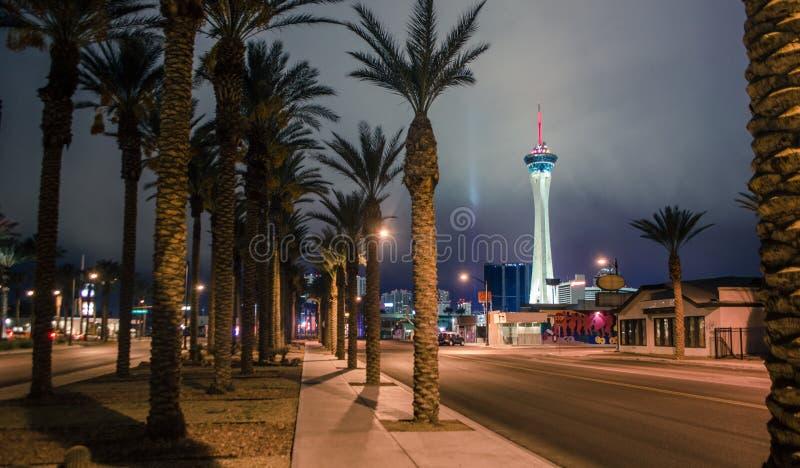 Hotel della stratosfera e palme a Las Vegas fotografie stock libere da diritti