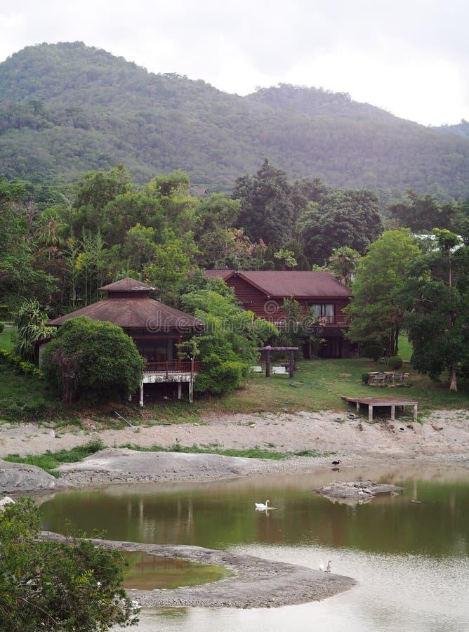 Hotel do estilo do vintage do país do recurso na selva com jardim e o lago pequeno fotos de stock