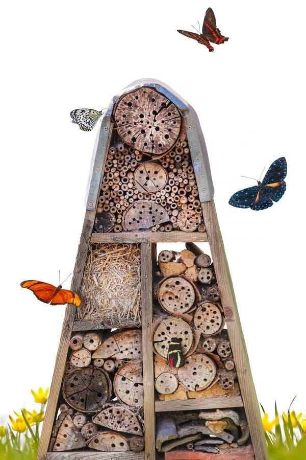 Hotel do inseto com borboletas do voo fotografia de stock