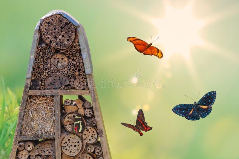 Hotel do inseto com borboletas do voo imagens de stock royalty free