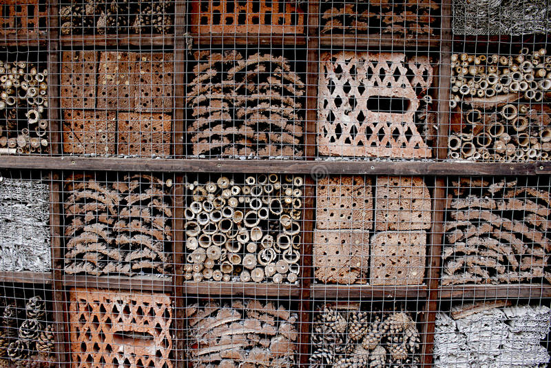 Hotel per gli insetti immagine stock