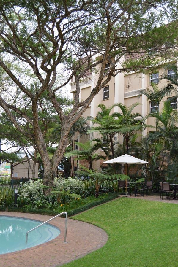 Hotel pool area stock photography