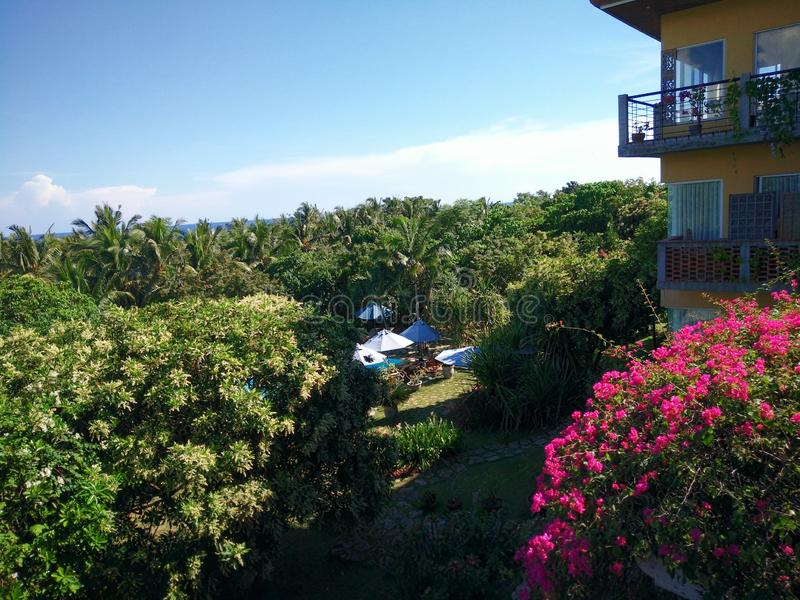 Hotel Resort Sits in Middle of Flowers and Trees in Panglao Island, Bohol in the Philippines stock photo