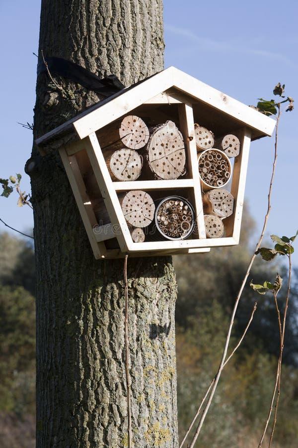Hotel solitario de la abeja imagen de archivo libre de regalías