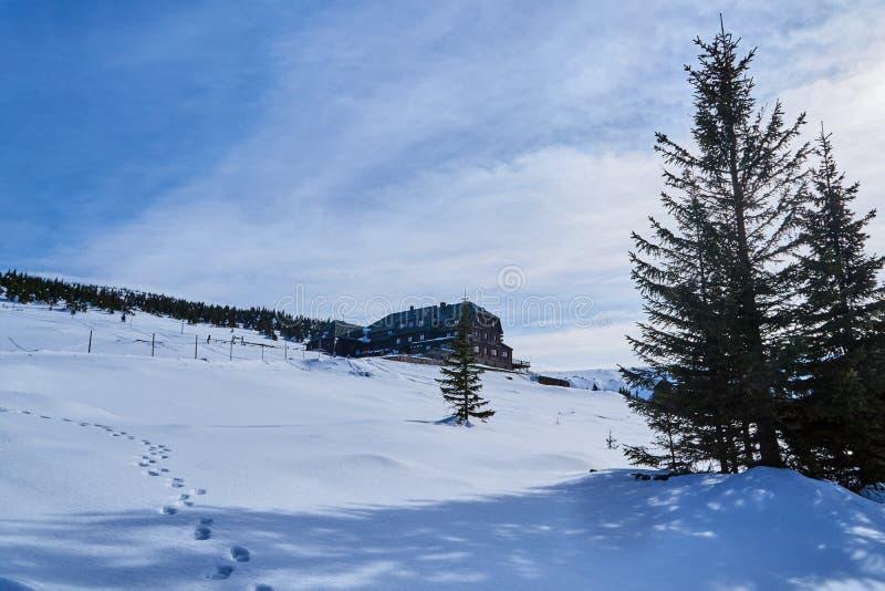 Hotel turystyczny w Górach Gigantycznych w zimie obraz royalty free