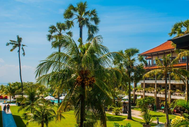 Hotel widok od wierzchołka z drzewkami palmowymi Bali, Indonezja, Tanjung Benoa Nusa Dua fotografia royalty free