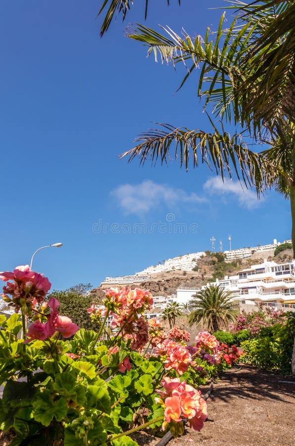 Hoteles de Puerto Rico fotos de archivo