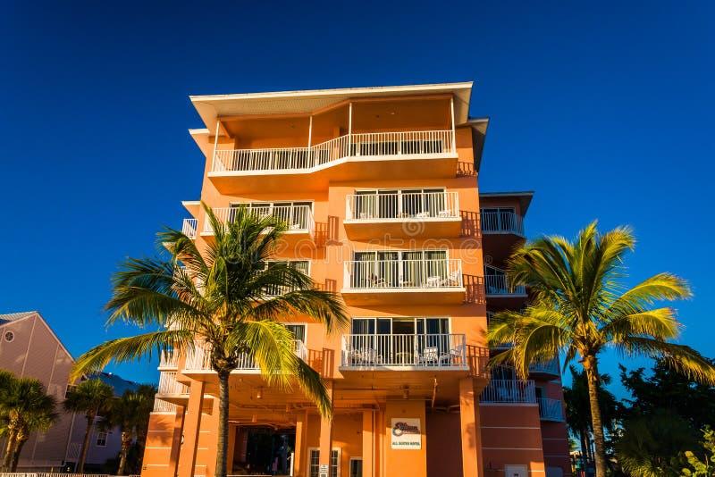 Hotell och palmträd på stranden i fortet Myers Beach, Florida fotografering för bildbyråer