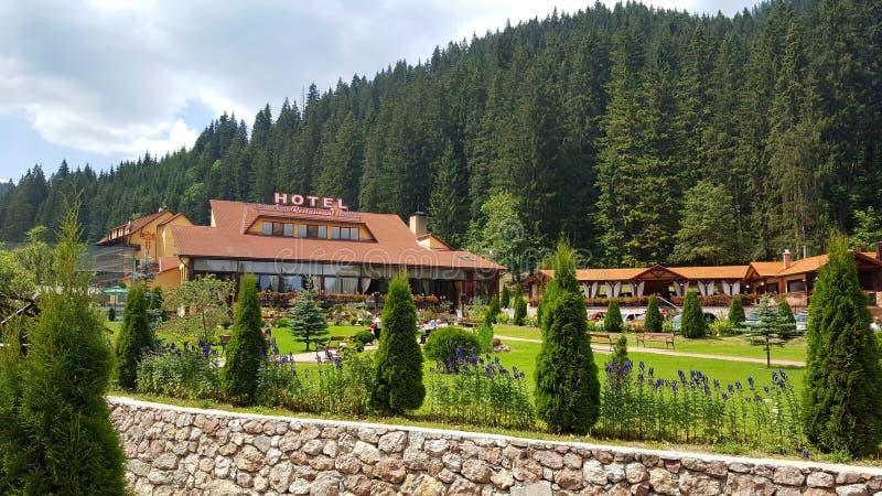 Hotelowy Lacul Rosu, Czerwony jezioro Bicaz Naturalny park Rumunia fotografia stock