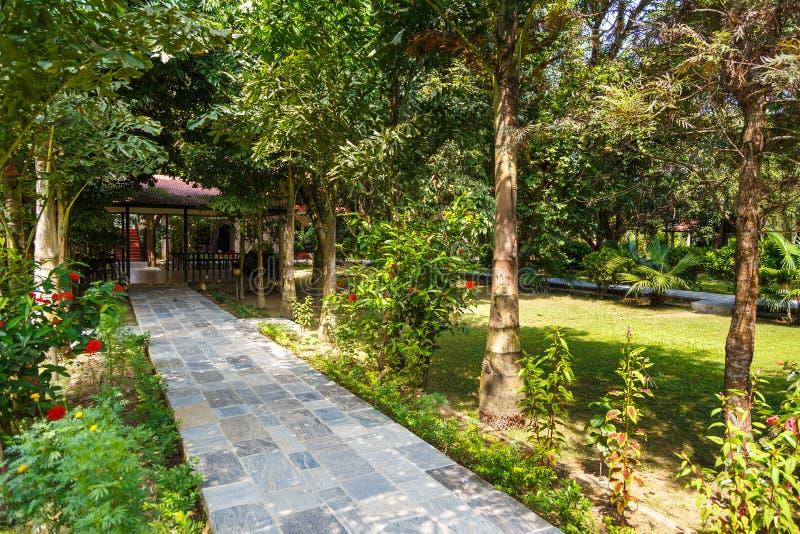Hotelowy patio w Królewskim Chitwan parku narodowym obrazy royalty free