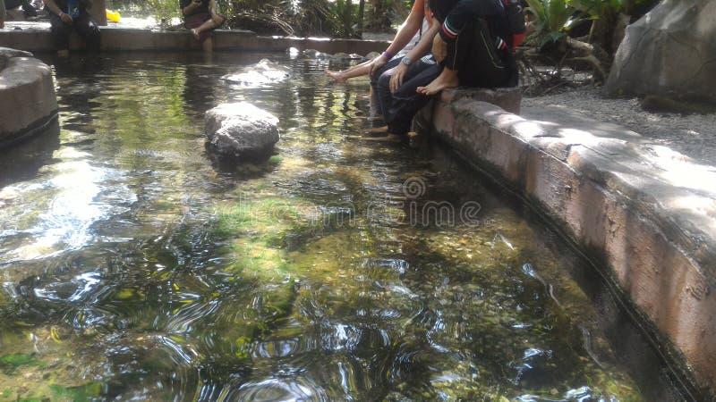 Hotspring de Sungai Klah, Malásia imagens de stock