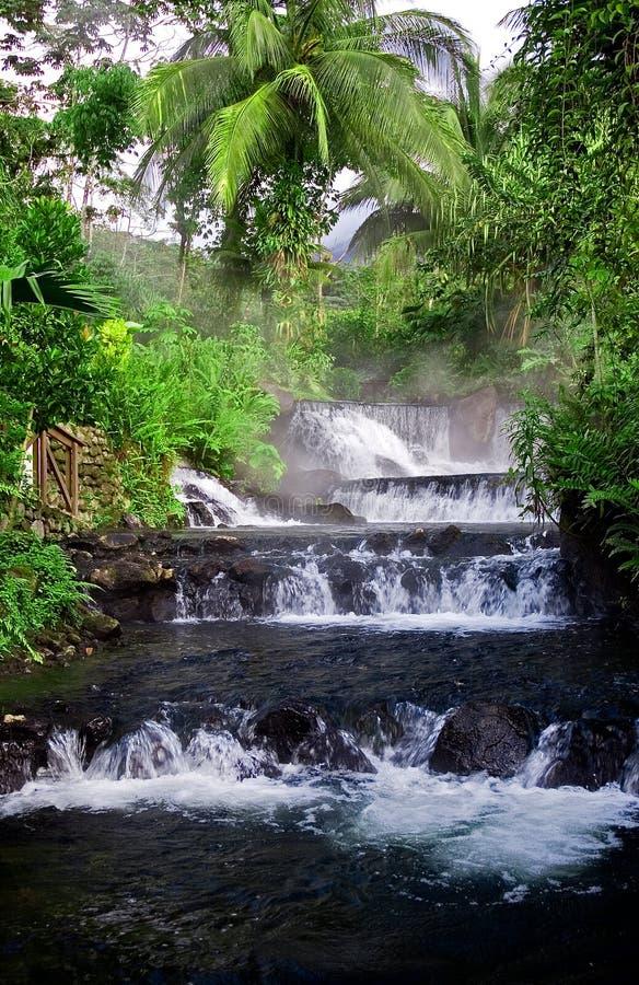 hotsprings ζούγκλα στοκ εικόνες