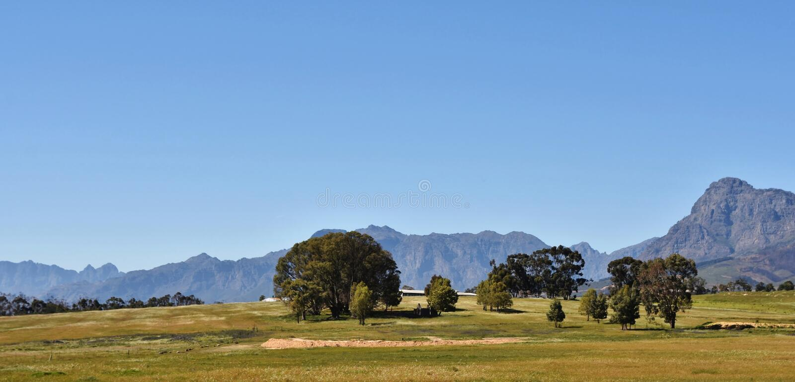 Hottentots Holland Mountains. Landscape with the Hottentots Holland Mountains and trees on a meadow royalty free stock images