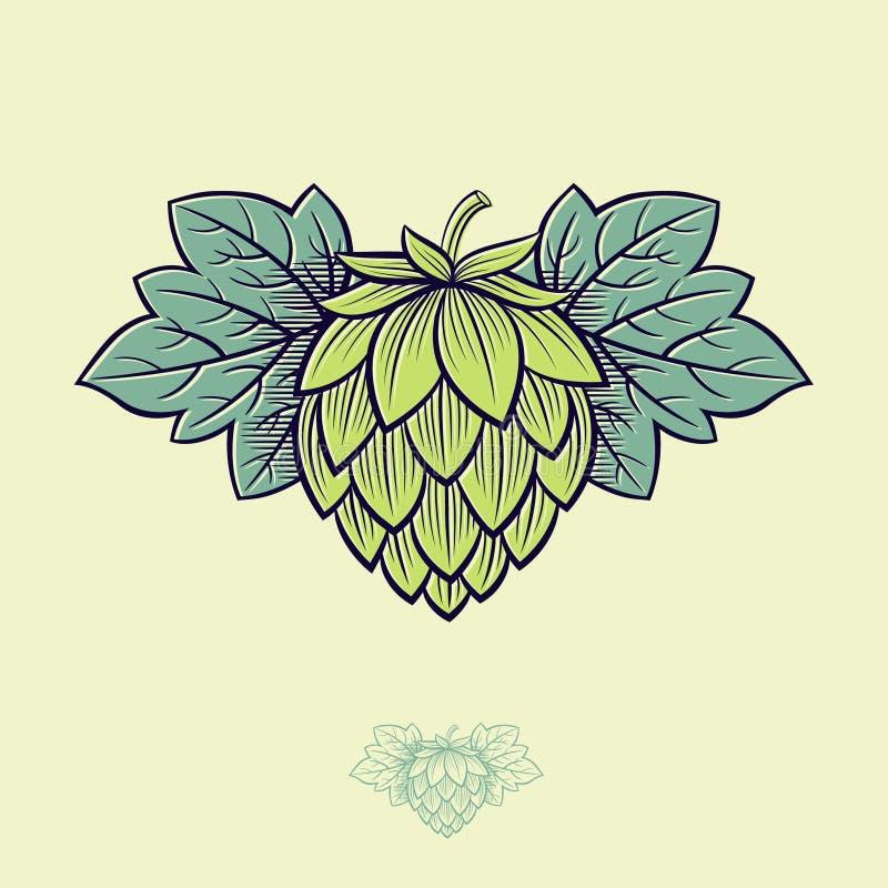 Houblon en c?nes vert Logo de houblon en c?nes Houblon de cône de bière et illustration de feuilles illustration stock