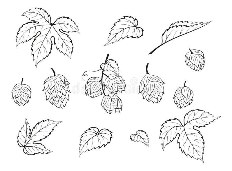 Houblon, ensemble de pictogramme illustration libre de droits
