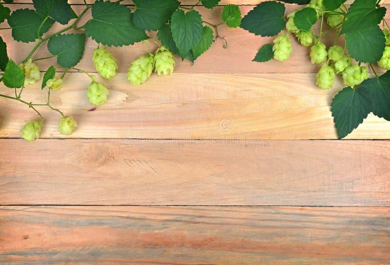 Houblon et feuilles en cônes sur le fond en bois photo libre de droits