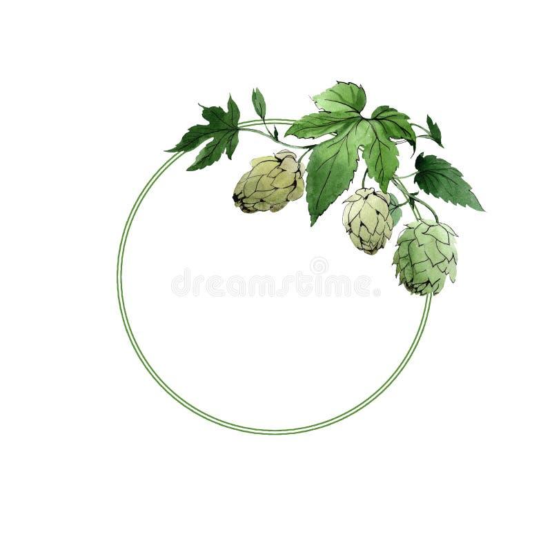 houblon lame verte Ornement de frontière de vue Feuillage floral de jardin botanique Ensemble d'illustration d'aquarelle de fond illustration stock