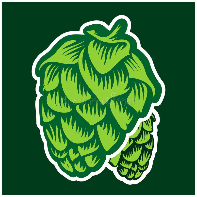 Houblon verts illustration stock
