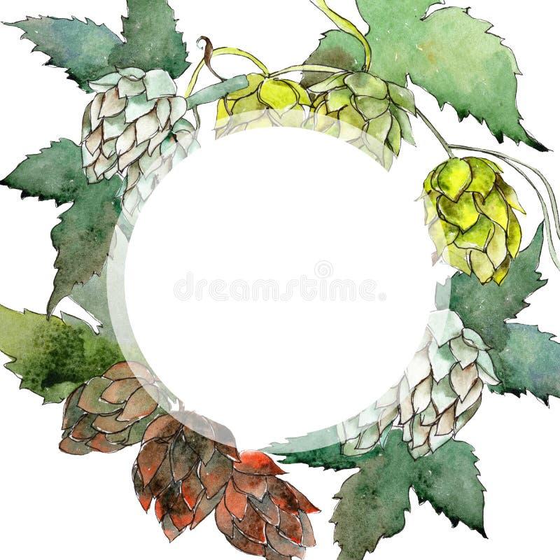 Houblon verts Ensemble d'illustration de fond d'aquarelle Place d'ornement de frontière de vue illustration stock