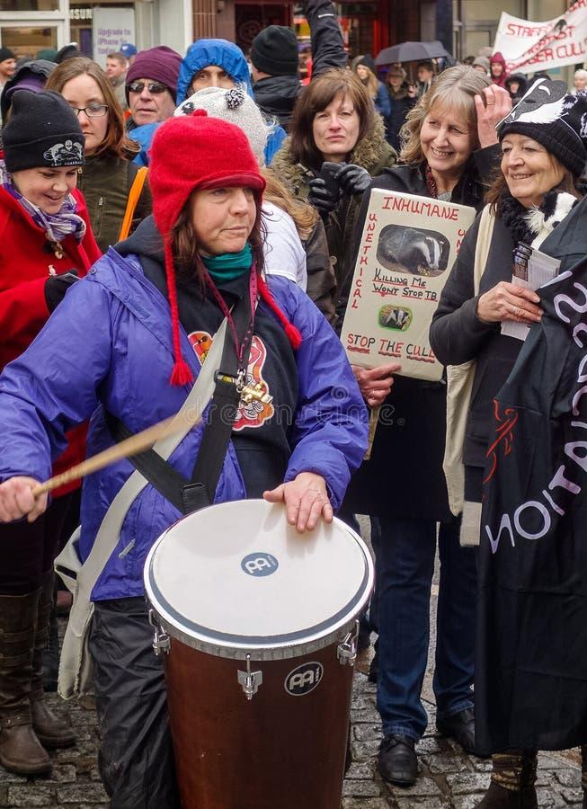 Houd het Dassen Cull Protest Maart tegen royalty-vrije stock fotografie