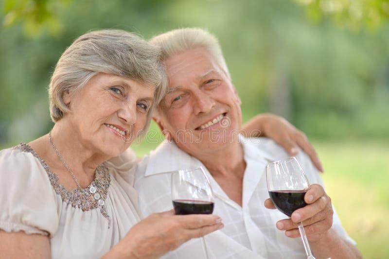 Houdend van bejaard paar royalty-vrije stock fotografie