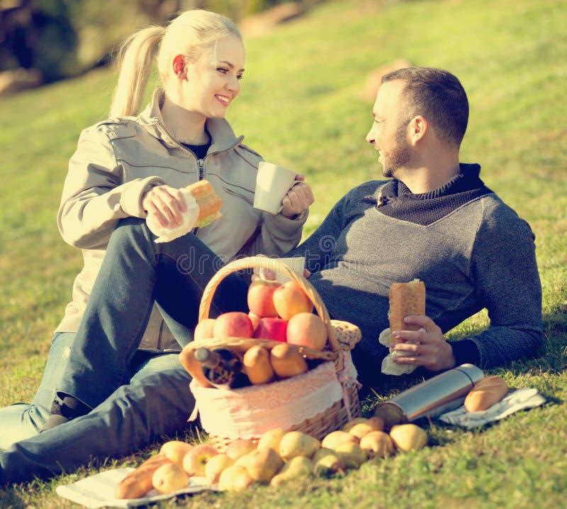 Houdend van gelukkig jong paar die zoals hebbend picknick babbelen royalty-vrije stock fotografie