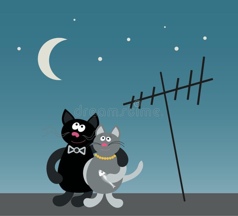 Houdend van paar van katten royalty-vrije illustratie