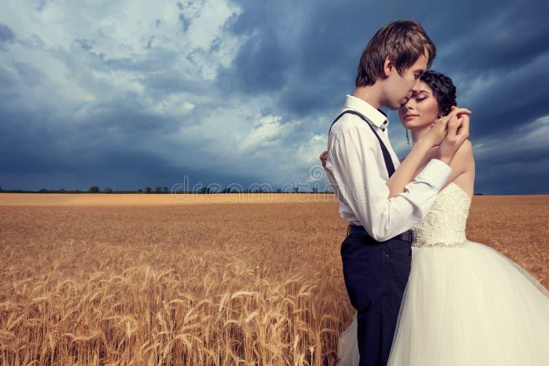Houdende van bruid en bruidegom die elkaar op tarwegebied omhelzen royalty-vrije stock foto
