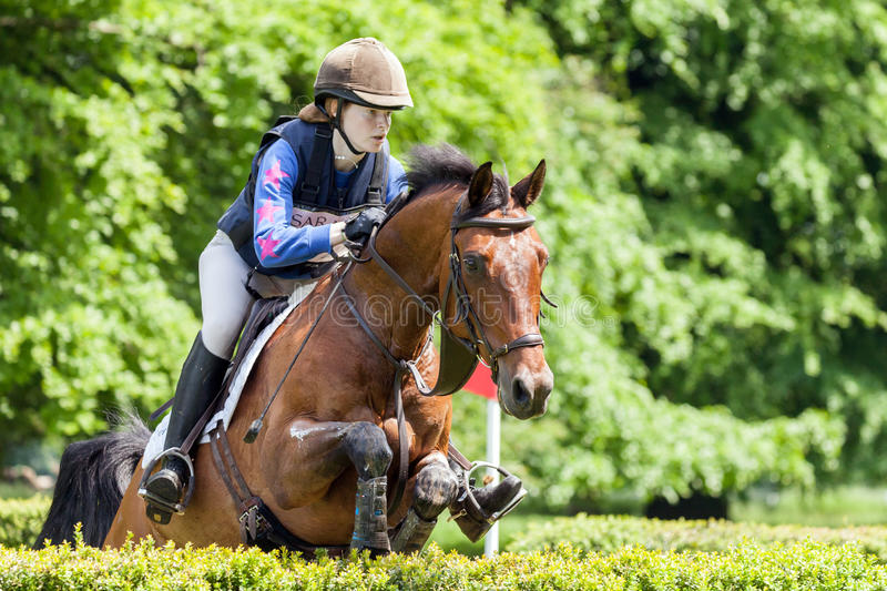 Houghton international horse trials Emily Rucker riding Cesano H. HOUGHTON, NORFOLK/ENGLAND - May 25th 2017: Houghton International Horse Trials 2017 Emily royalty free stock image